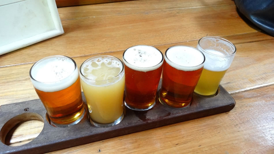 Flight of Young Henry's brews