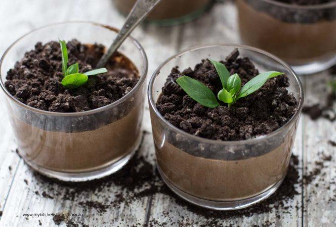 Chocolate mousse flowerpot