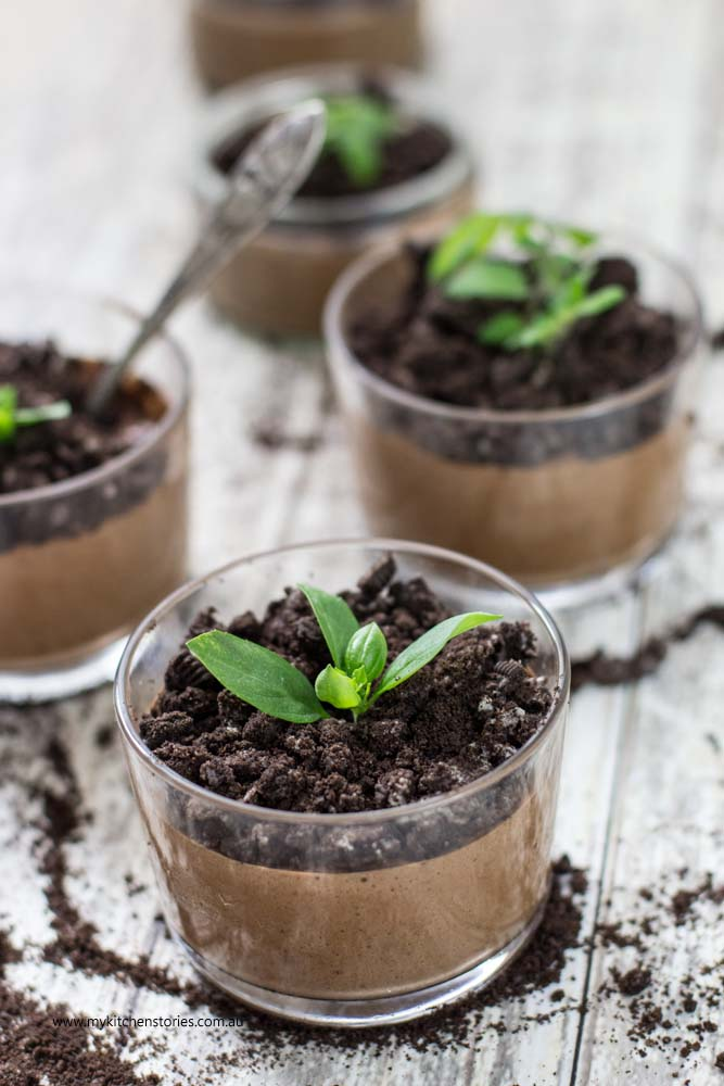 Chocolate mousse flowerpot