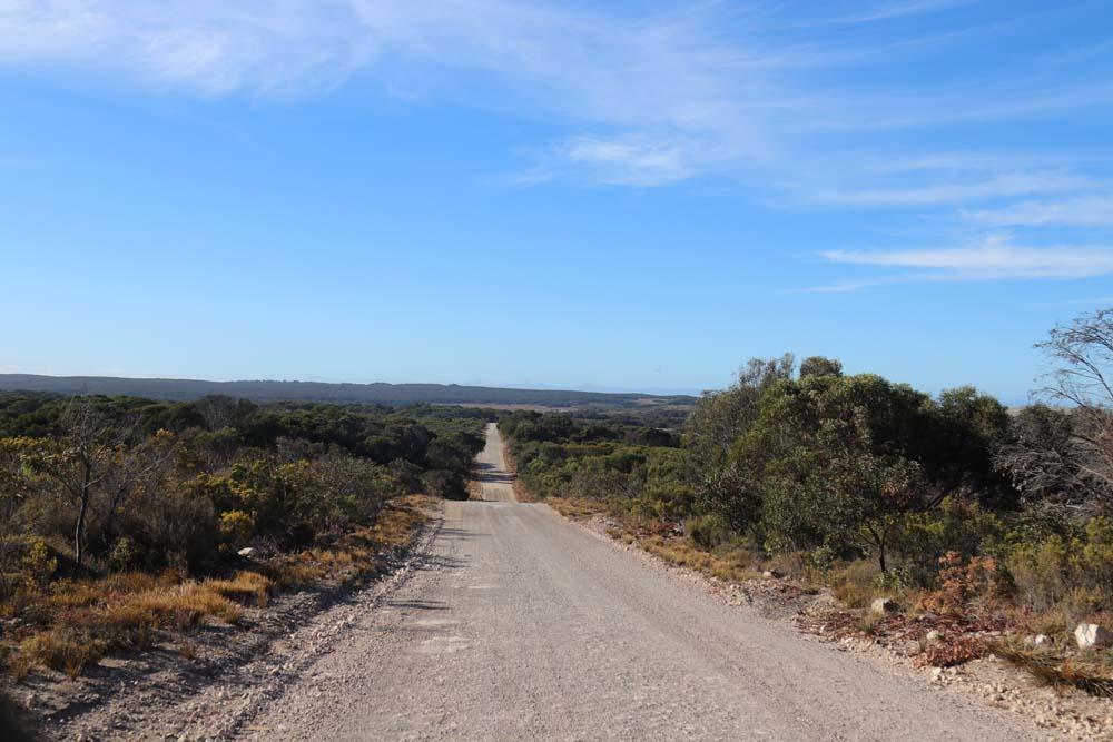 My week at My Kitchen Stories and the long roads at Kangaroo Island