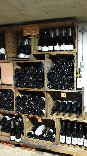 cellar at Ca de noci