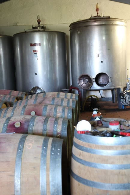 The cellar. Here barrel fermentation and stainless steel vats