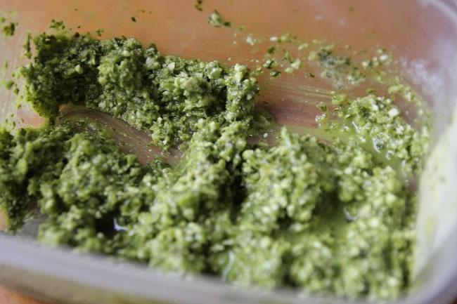 Coriander macadamia Pesto in a container