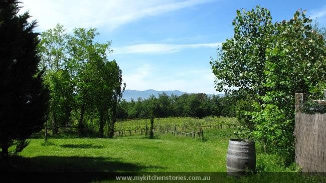 Tuscany from Paterna