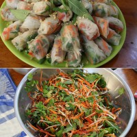 Vietnamese Rolls with peanuts