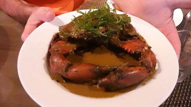 Curry Mud Crab