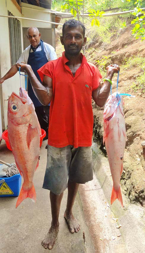 Cooking in Suva, fisherman with fish