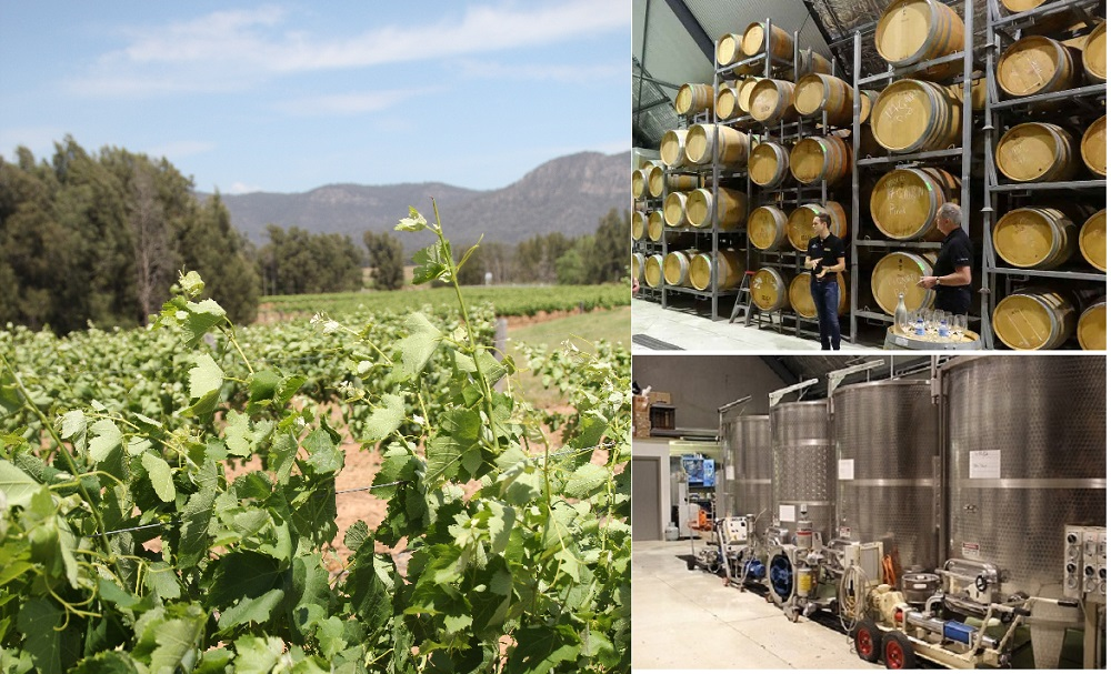 Keith Tulloch winery 1