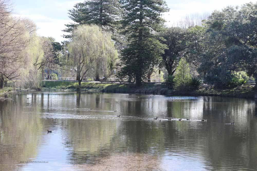 Centenial Park Pond