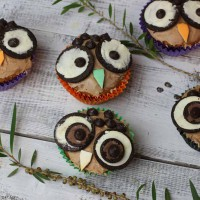 Easy Owl Cupcakes with big eyes on a white bench