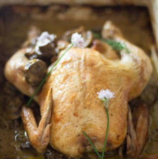 One Pot Chicken and Mushrooms