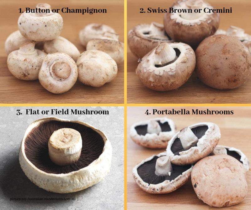 Mushroom types My Kitchen Stories
