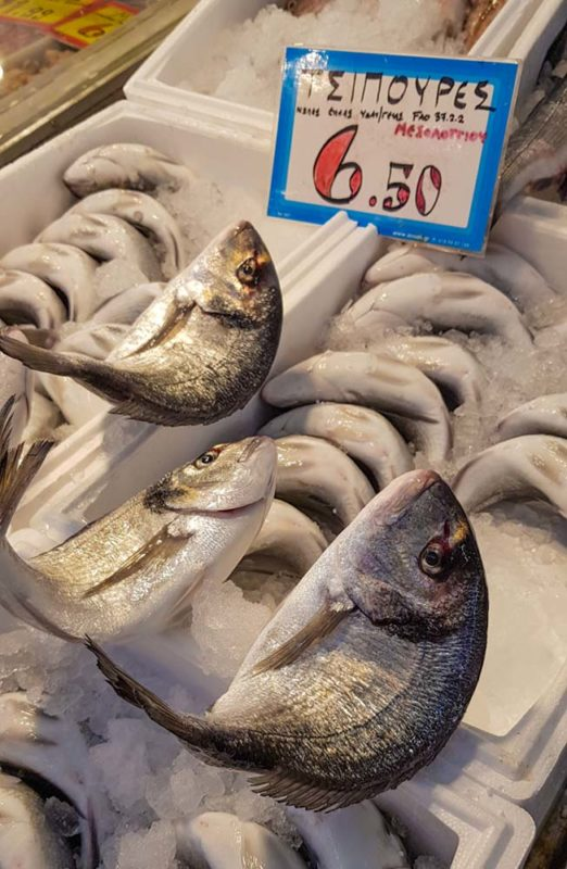 Fresh fish at the Central markets in Athens