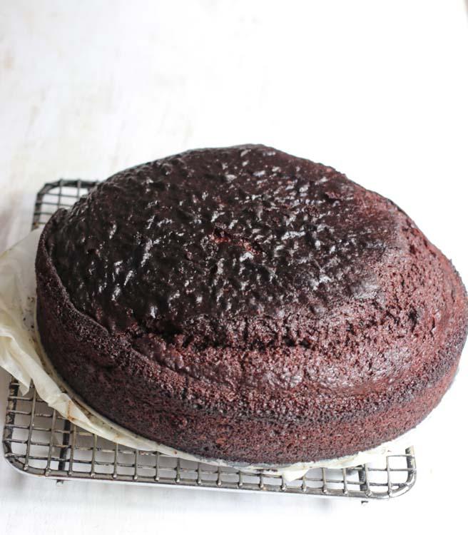 Freshly baked sourdough starter chocolate cake