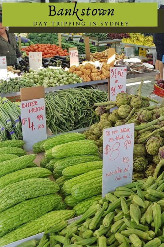 A vegetable store filled with unusually vegetables
