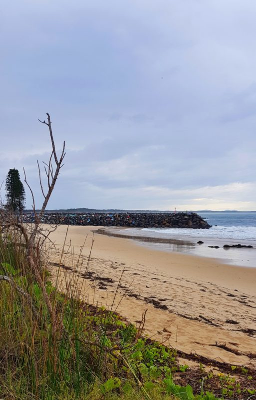 Town Beach Port Macquarie